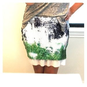 Brand new with tags sequin skirt from Zara!