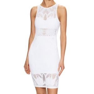 NEW Mara Hoffman Lace Jaquard Fitted Dress