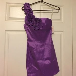 Bella Rene Dresses & Skirts - Beautiful, new purple dress!