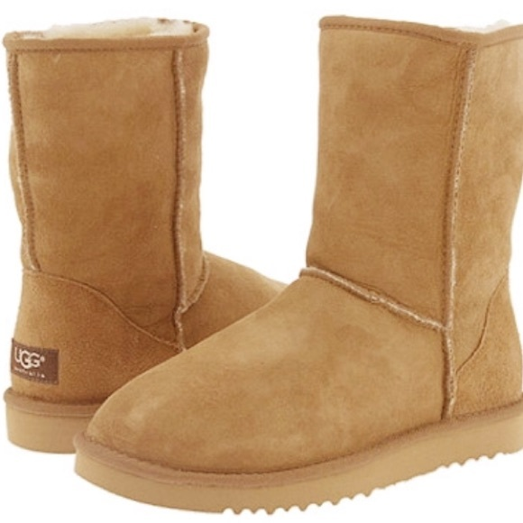 Classic Tan High Top Ugg Boots