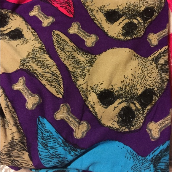 bed1cb426880dd LuLaRoe Pants | Brand New Chihuahua Tc Leggings | Poshmark