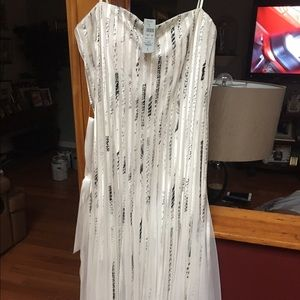 Cache dress brand new in perfect condition