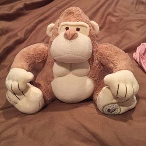 Other - My natural stuffed monkey.