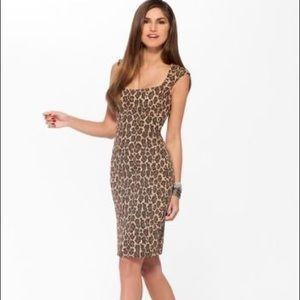 NWT Cache Animal Print Dress