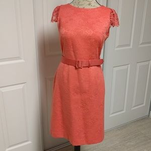 Alex Marie Dresses & Skirts - Alex Marie coral lace sleeve belted dress
