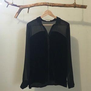 Hinge Tops - Hinge Black Sheer Velvet Blouse