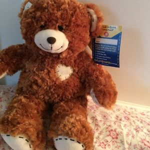 Build a bear champ closet tour celebrity