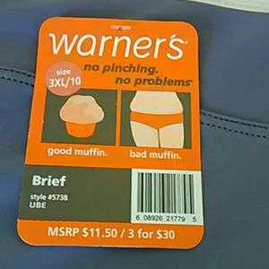 Warners Intimates & Sleepwear - No Pinch Plus Size Panties Bundle Pack