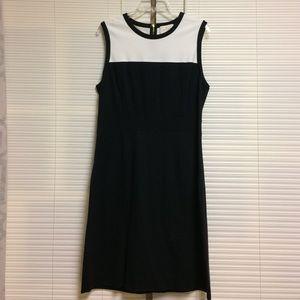 NWT Kate Spade Janelle Dress