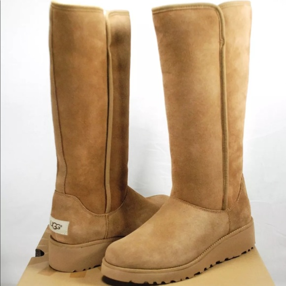c7dae4e5ae6 Nib chestnut Kara winter women's wedge ugg boots NWT