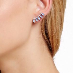 Cara Jewelry - Beautiful earrings