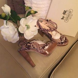 Coach Shoes - 💥Sale💥Coach shoes
