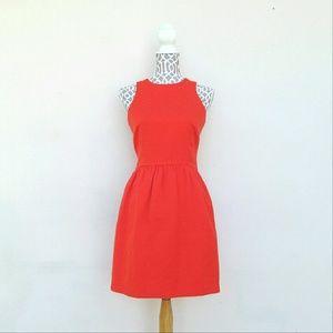 Cynthia Steffe Sleeveless Dress Size 6