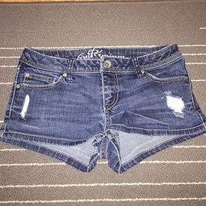 YMI Pants - YMI Premium Jean Shorts