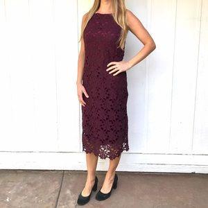 BB Dakota Dresses & Skirts - Aubergine lace dress