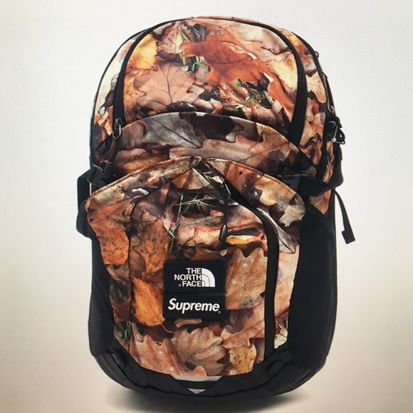 80db6fcd9 Supreme x the north face TNF leaves backpack Boutique