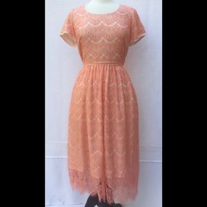 New Eshakti Apricot Lace Fit & Flare Dress L 14
