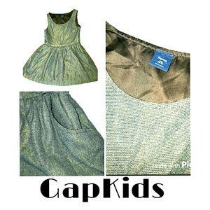 GAP Other - 🎉🎉SALE🎉🎉4T Brown & Gold Sparkle Dress