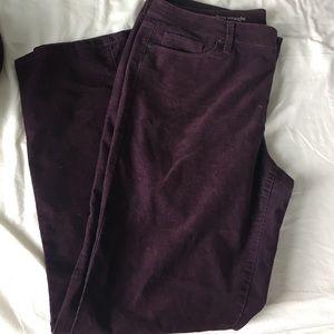 LOFT Pants - LOFT Modern Straight Purple corduroys