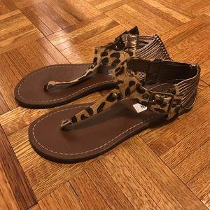 Steve Madden Calf Haired Thong Sandals