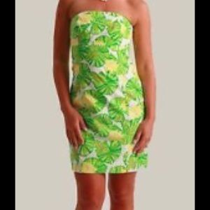 Lilly Pulitzer Dresses & Skirts - 🐸 Lily Pulitzer Franco dress🌼