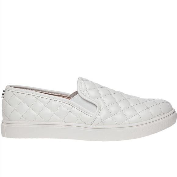 5131caf0f0e Steve Madden Ecentrcq slip-on sneakers. M 58583d244e95a30c7d03febd