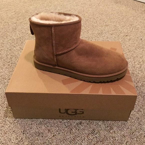 cbc1597bb72 Never Worn UGG Boots, 'Classic Mini' Chestnut 10 NWT