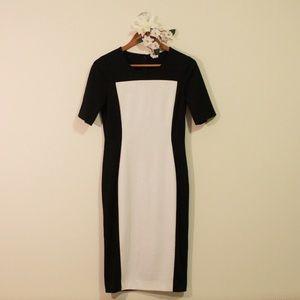 Venus Black and White Dress