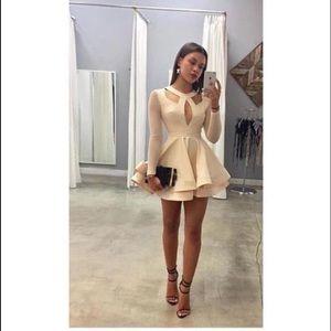 Ashlee Natalia Dresses & Skirts - Long Sleeve Mini Dress