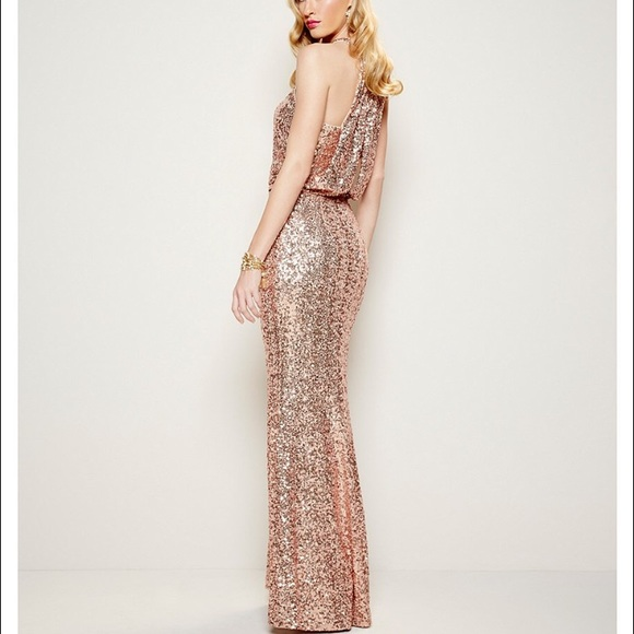 Belle Badgley Mischka Dresses | Blush Sequined Evening Gown Prom ...