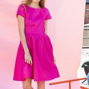 Bright Pink A-Line Dress (Shabby Apple)