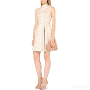 Ted Baker London Azraa fit and flare nude dress