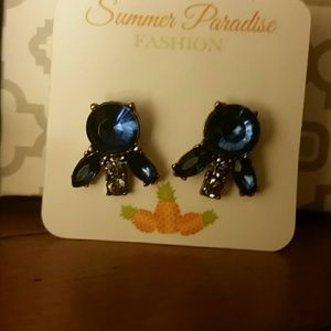 *Cute Blue Crystal Earrings*