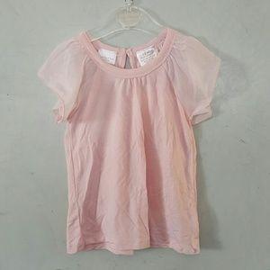 Kardashian Kollection Other - NWT Pink sheer sleeve top