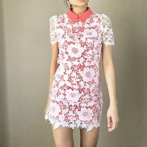 CHICBOMB Dresses & Skirts - Bianca Crochet collar dress.