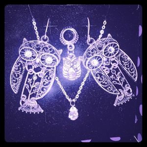 Owl set with a surprise owl gift (;
