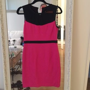Cynthia Steffe tailored dress