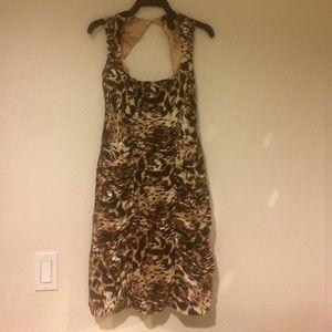 arden b leopard dress on Poshmark