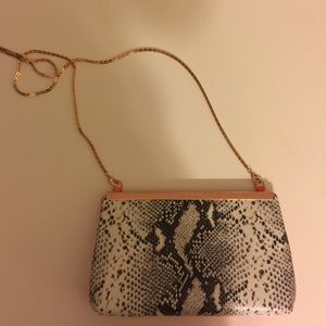 Ted Baker clutch/crossbody
