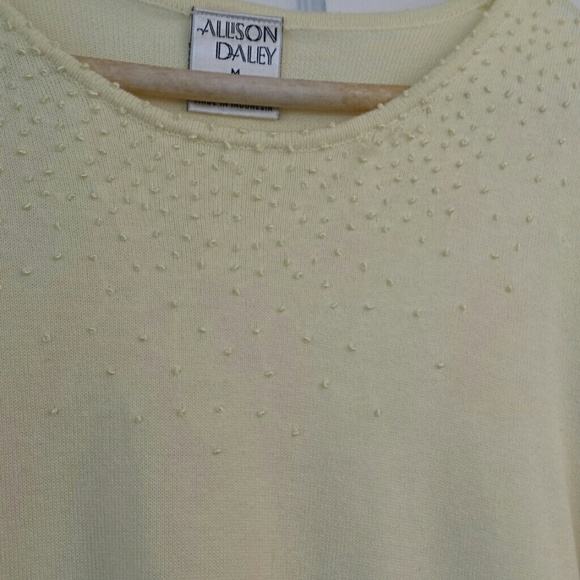 Allison Daley Tops - (3/$23) Sweater top