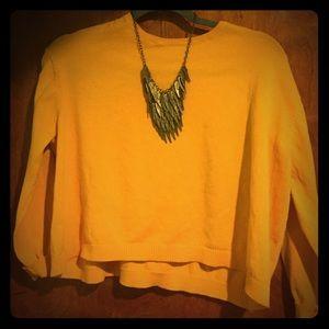 Cropped Zara Knit Sweater