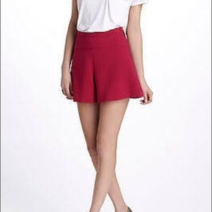 Anthropologie Leifnotes size 0 high waisted shorts