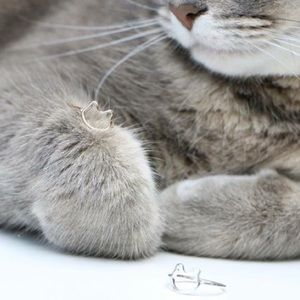 Jewelry - Kitty Cat Rings