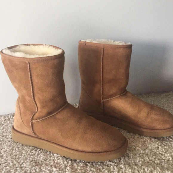 Short Camel Colored UGGS