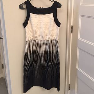 The Limited black and white knee length dress