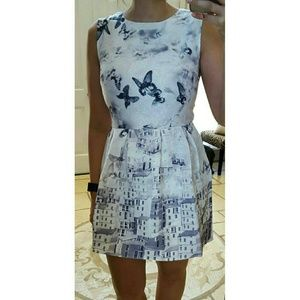Dresses & Skirts - Black & White Butterfly Print Dress