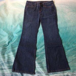 LOFTModern Flare Jeans