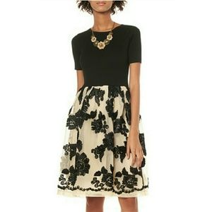 Gracia Dresses & Skirts - Ribbed Top Embroidered Dress
