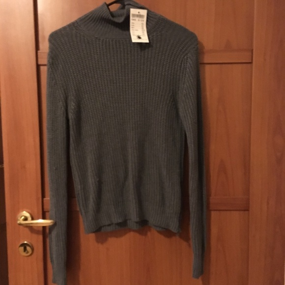 e9a35a68089 NWT Brandy Melville Georgia turtleneck sweater