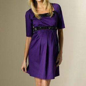 Rosie Pope Dresses & Skirts - Rosie Pope Brit Purple Kennedy S Maternity Dress